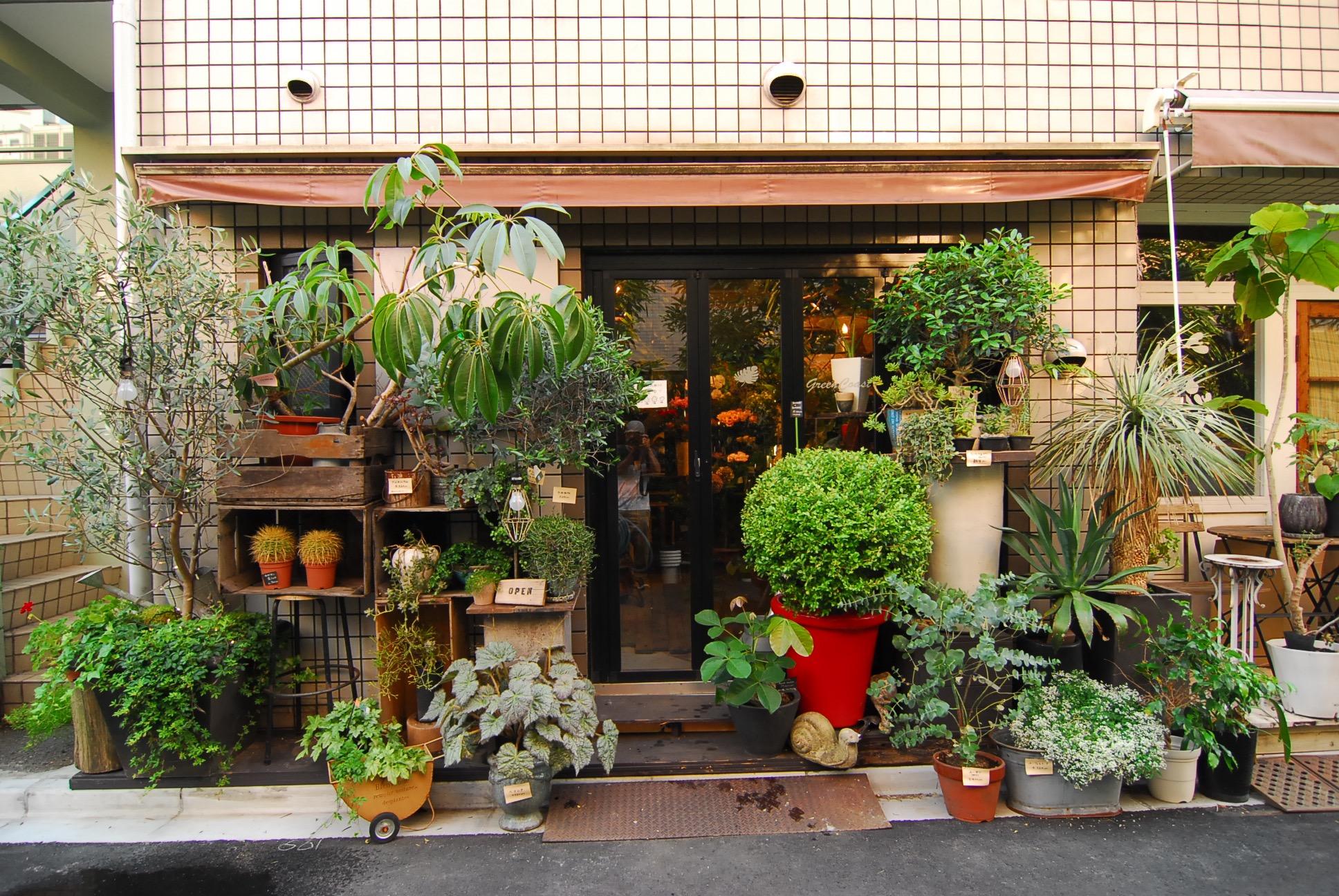 » 中野あるきVol.2 緑あふれる花屋さん「Green Coast」